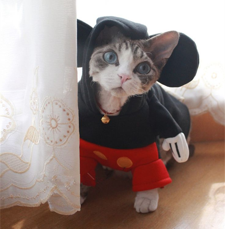 Cartoon Mouse Cat/Dog Costume