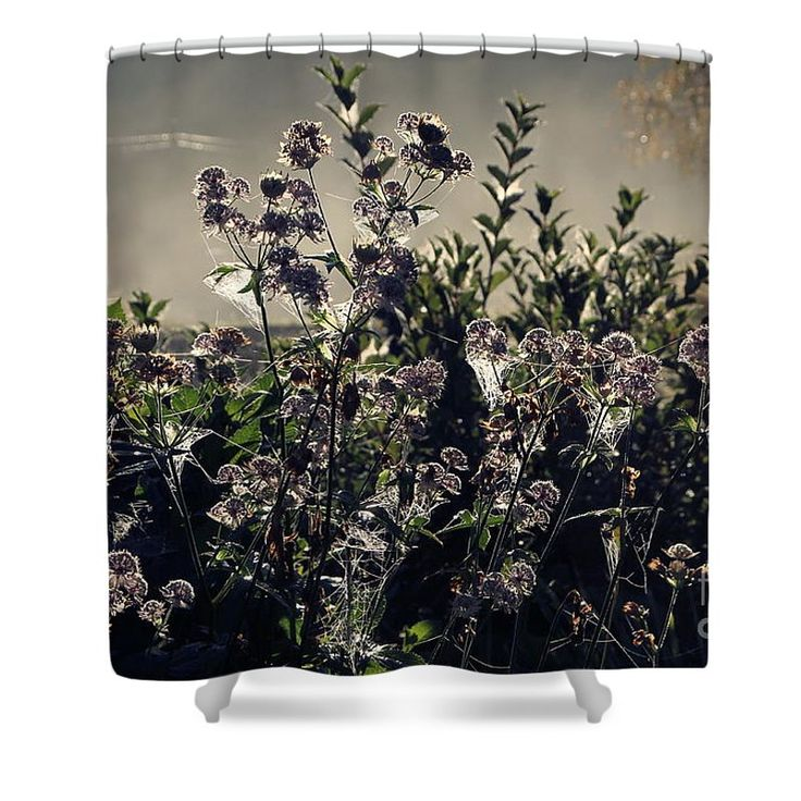 "Morning Dew Backlight Shower Curtain by Sverre Andreas Fekjan.  This shower curtain is made from 100% polyester fabric and includes 12 holes at the top of the curtain for simple hanging.  The total dimensions of the shower curtain are 71"" wide x 74"" tall."