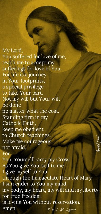 "Fr. V.M. Lucia- ""My Lord, You suffered for love of me, teach me to accept my sufferings for love of You..."" - Every Day is a Gift 