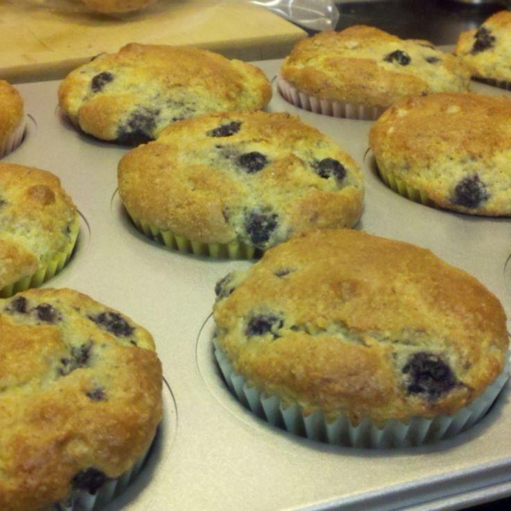signature blueberry muffins recipe blue berry muffins
