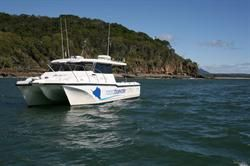 Noosa Bluewater Charters and Whale Watching Tours