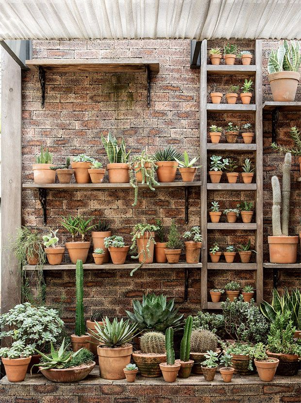 Love the look of the terra cota pots and the brick and wood.