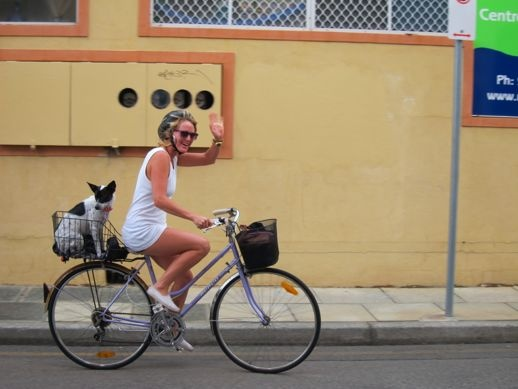 fighting for sanity in your city - sort of - A Beautiful City - Freo is truly the bike capital of theworld