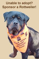 North East Rottweiler Rescue & Referral