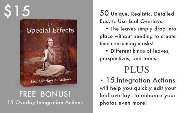 JD Special Effects Leaf Overlays Info