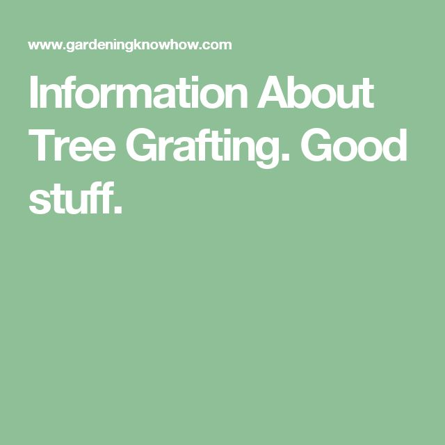 Information About Tree Grafting. Good stuff.