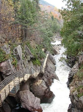 High Falls Gorge & Trails on way to Whiteface from Lake Placid (5 min. from mountain). $13 includes unlimited s'mores pks and you will find a large fire near lodge. $3 more & you are provided a hot dog lunch. Both include sticks! So fun, beautiful & food was yum!