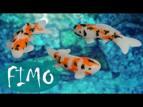 1000 images about tutorials miniature pet shop fish on for Mini koi fish