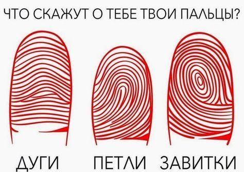 Что означает каждый узор? Это интересно! Если внимательно посмотреть на подушечки пальцев, можно увидеть, что линии складываются в строги...