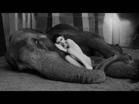 攝影師將一位裸體女模放到大象身邊,接著拍下的照片讓大家都看到忘記眨眼睛了… - boMb01