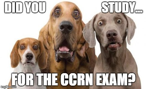 CCRN Review Study Guide - Pinterest