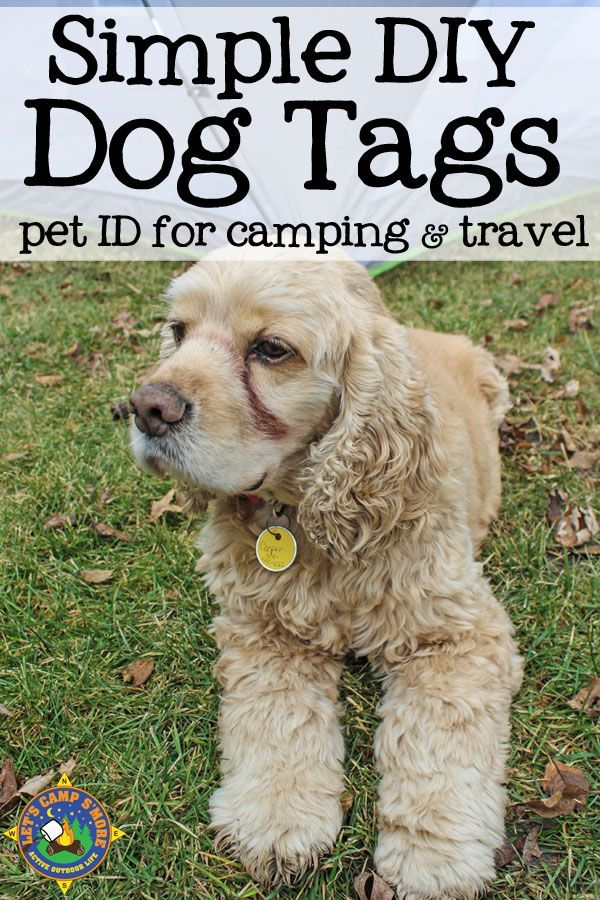 28 best your favourite pet pins images on pinterest dog tips for camping with dogs includes a tutorial for diy dog tags these custom dog tags can be used to identify your dog while camping or during travel solutioingenieria Image collections