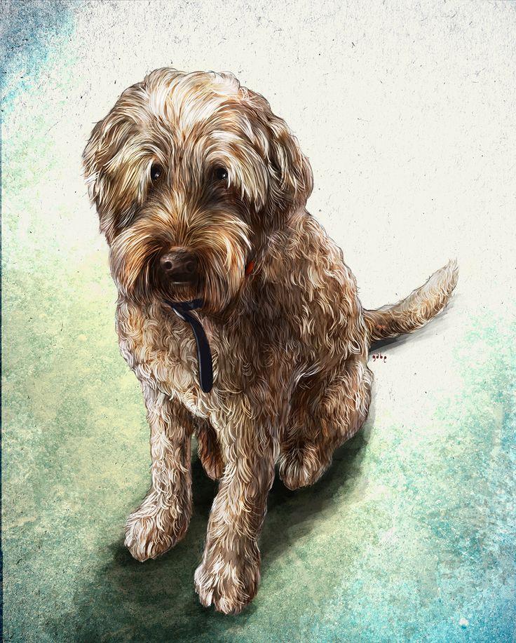 Commissioned portrait of Bodie.  Commission info & requests: https://www.etsy.com/au/listing/191989009/custom-pet-portrait-beautiful-digital?ref=shop_home_active_2