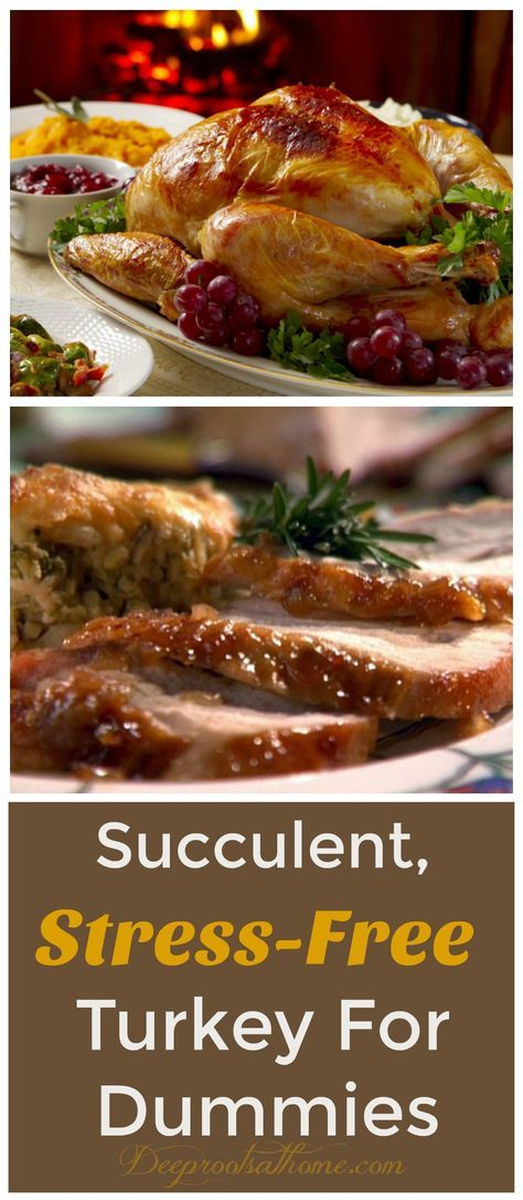 """Succulent, Stress-Free Turkey For Dummies, feast, Thanksgiving, Christmas, holiday, main entree, meat, main dish, recipe, instructions, slow roasted turkey, low temp roasting, roast overnight, Annie Kate's Homeschool Review, festive holiday, """"Let's Cook it Right"""" by Adelle Davis"""", organic turkey, Whole Foods, Larry Schultz, Thanksgiving bird, gobblers, eat too much, give thanks, mealtime, family traditions, moist white meat, dark meat, cookbook, moist, never dry, tender,"""