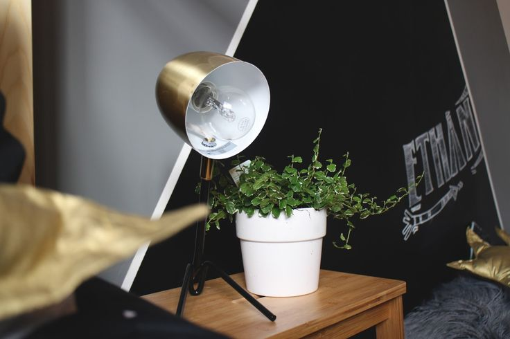 Gold lamp and pot plant