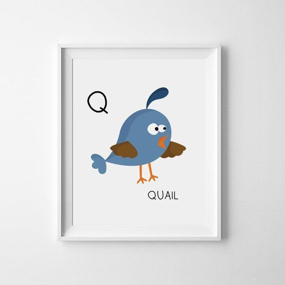 Instant Download Nursery Print Q Is For Quail Nursery Letter Art Print Abc Alphabet Printable Nursery Dig Printable Nursery Art Nursery Art Nursery Wall Art
