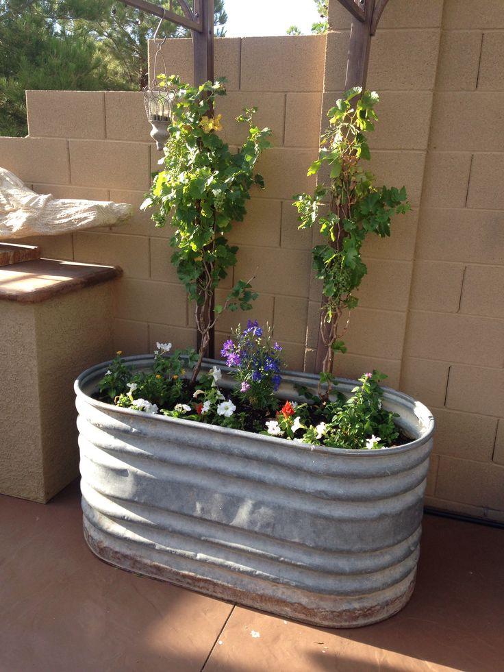 Easy Raised Garden