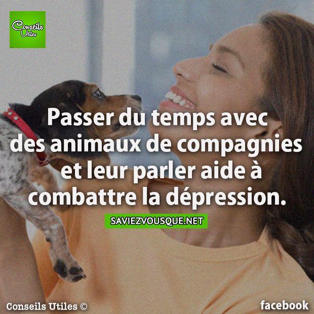 Passer du temps avec des animaux de compagnies et leur parler aide à combattre la dépression.