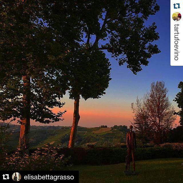 Sentieri a Dogliani tra borgate silenziose e panorami bellissimi http://lacciuganelbosco.com/langhe-da-scoprire/itinerari-dogliani/ … #dogliani #lacciuganelbosco #langhe #itinerari