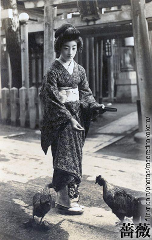 謎に包まれた妖艶の芸妓。明治・大正・昭和を生きた「富菊」のオーラが、時代を超えている