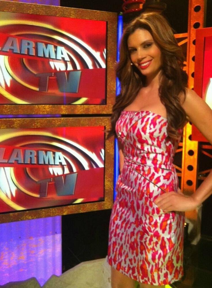 The Joy Of Painting Host: Alarma Tv Host