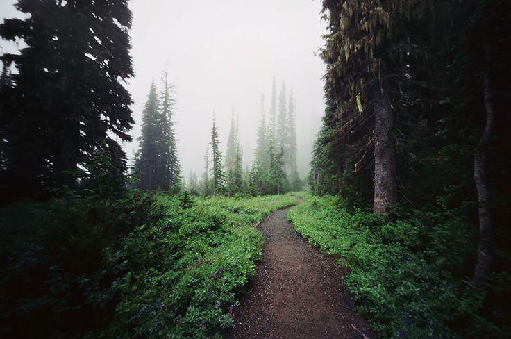 caminhos magicos 18
