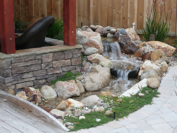 Small Backyard Water Features | The 2 Minute Gardener: August 2011
