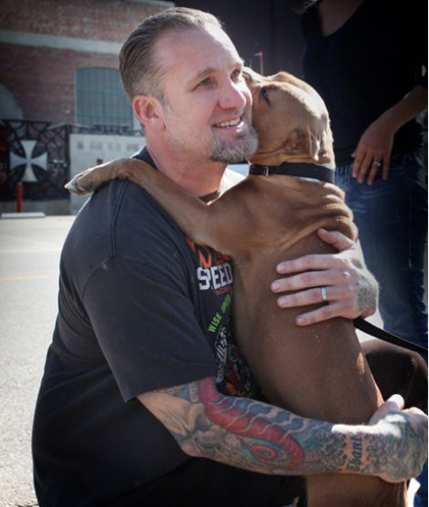 Happy ending in Jesse James & missing dog story. Sandra Bullock's husband and the reality star owner of West Coast Choppers finally recuperated his beloved pet pit bull, Cinnabun whom he lost on January 25th.