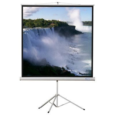 """Buhl Matte White Portable Projector Screen Viewing Area: 70"""" H x 70"""" W"""