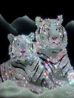 #TigersInGIF