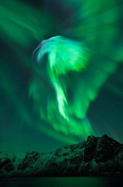 An aurora shaped like an eagle or a phoenix is photographed in the above Grotfjord, close to Tromso, Norway. The image was taken by Arctic photographer Bjorn Jorgensen.
