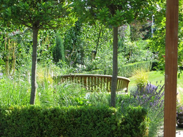 A line of mature standard bay tree divides the garden and is underplanted with Rosa' Bland Double de Coubert' and perennials. http://www.howbertandmays.ie/dalkey-villa-garden