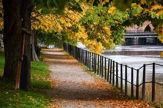 stefansphotos.se blogg: Oktober är färgernas tankarnas och friska luftens ...