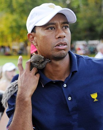 Lindsey Vonn Plays With Squirrel, Pranks Tiger Woods