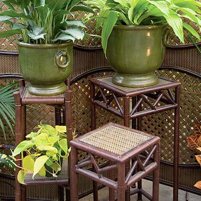 Outdoor Plant Shelves | Plant Stands   Outdoor   Gifts U0026 Holidays |  Waterloo Gardens