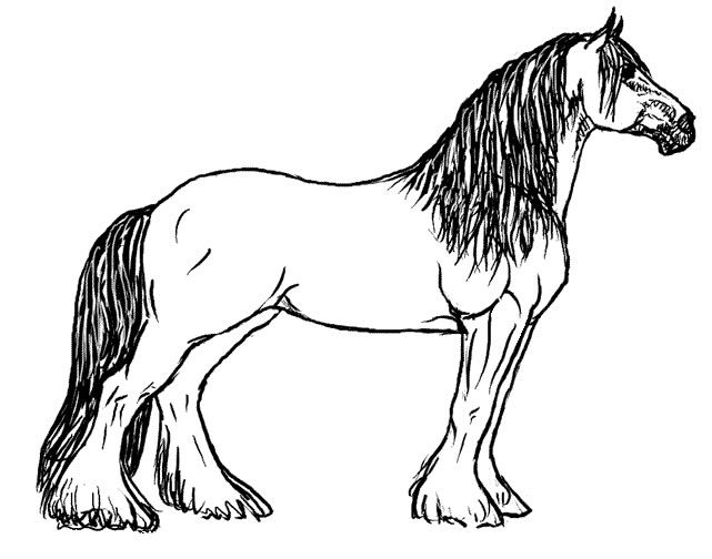 Draft Horse Coloring Page