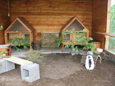 die besten 25 kaninchenstall ideen auf pinterest. Black Bedroom Furniture Sets. Home Design Ideas