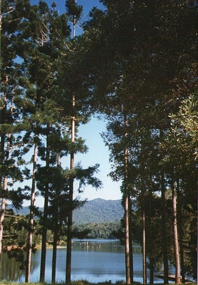 Lake Tinaroo, Atherton Tableland, Queensland