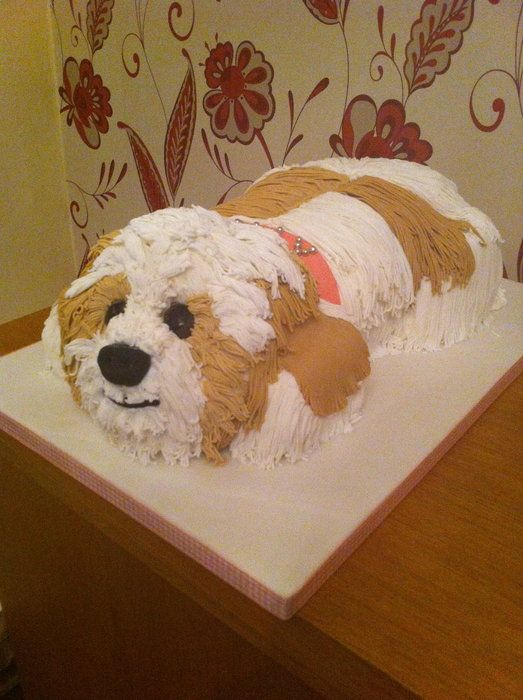 47 Best Images About Dog Cakes And Bday Party Ideas On