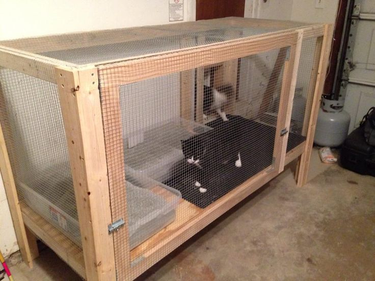 Our version of a garage litter enclosure, thanks to the ideas I found right here on Pinterest!  The cats enter from a cat door in the entryway.  It's quite a success!    Look for other versions right here on my Pet board.