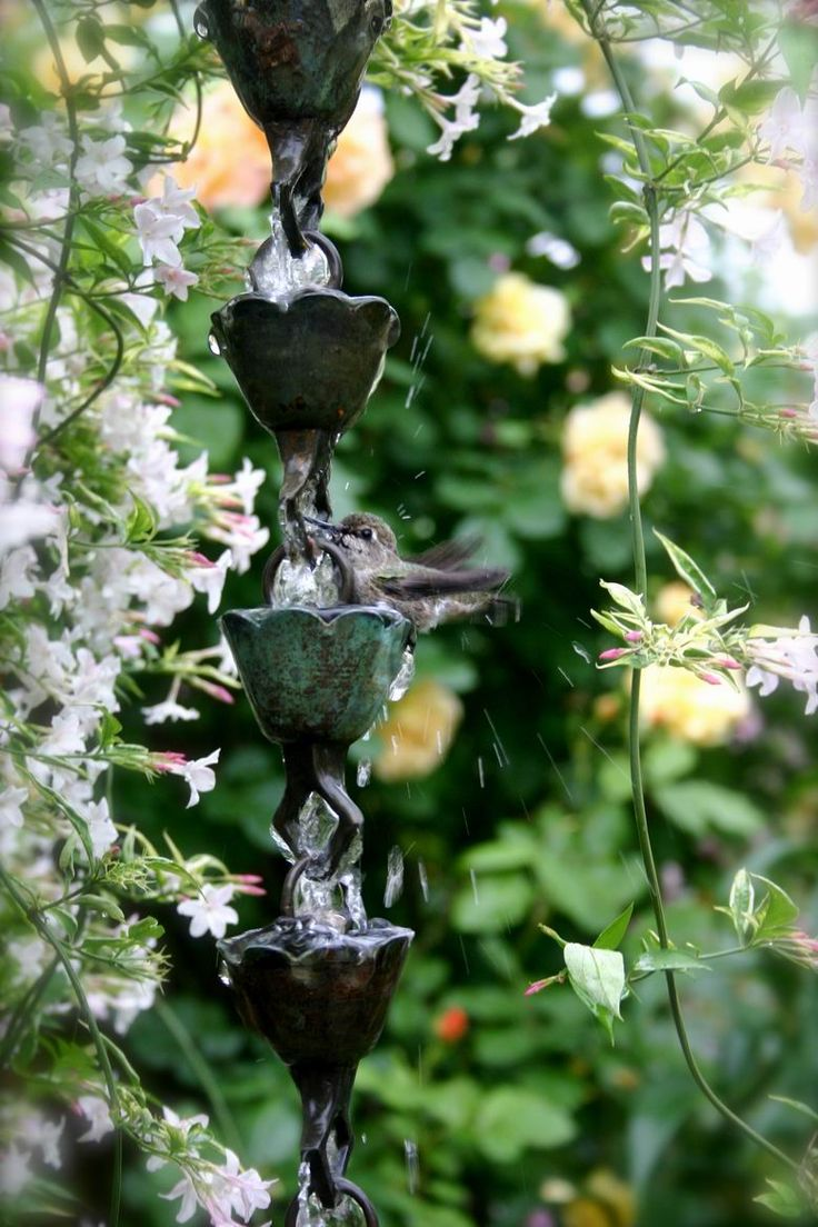 A rain chain provides movement, sound and beauty and this one has the added benefit of a hummer visiting for the water