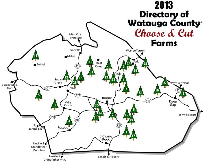 boone nc choose and cut christmas tree farms collection