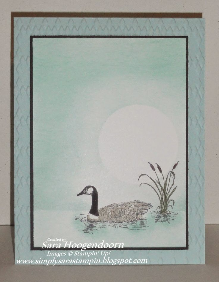 Simply Sara Stampin': More from Moon Lake for the Creative Blog Hop