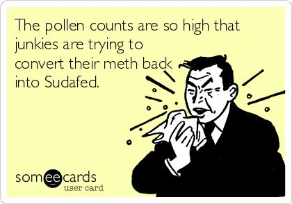 The pollen counts are so high that junkies are trying to convert their meth back into Sudafed.