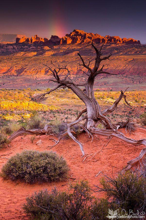 Desert Rainbow . Arches National Park . Utah