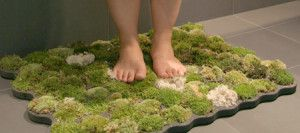 DIY Moss Bath Mat: You can create you own Moss Bath Mat that gets water from the steam in your bathroom as well as from you when you dry off! Make sure to place the mat directly outside of your tub or shower like you would any other mat. I think this is a great use of greens in the home especially if you are someone who isn't good at keeping plants alive. (Supplies: Plastazote Foam Roll; Scissors; X-ACTO Knife; Stencil; Hot Glue Gun;)