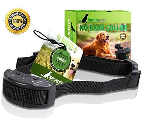 Shock Collar For Aggressive Dogs In Va