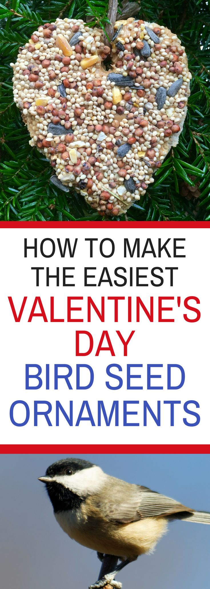 How to Make the Easiest Valentine's Day Bird Seed Ornaments Recipe without gelatin.  Healthy bird treats that that kids will love to craft!