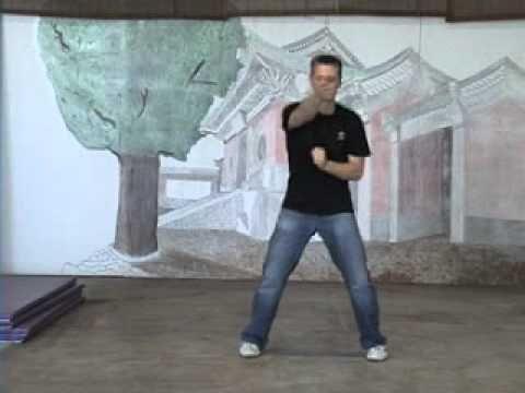 Ip Man Siu Lim Tao Blocking Drill Gahn Da by Sifu Anderson of Wing Chun Kung Fu - YouTube
