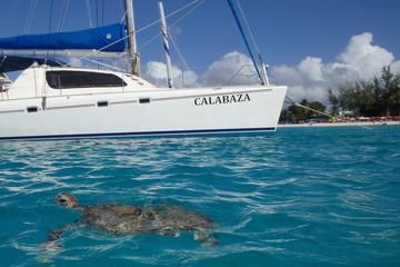 Swim and snorkel with sea turtles, over shipwrecks and tropical reefs in the warm, clear waters around Barbados. This small-group tour is perfect if you hate big crowds or just want a more personal, relaxed experience.